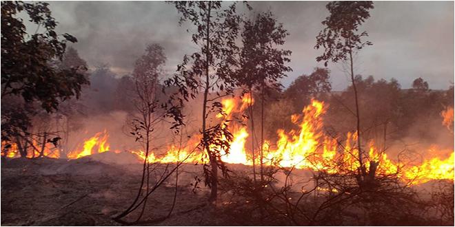 أكودة: حريق هائل والحماية تعجز عن اخماده